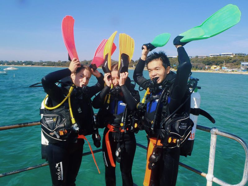 Play | Bayplay Adventure Tours | Mornington Peninsula | Diving | Dive | Diving Course | Scuba | Scuba Dive | Scuba Dive Course | Diving Course | Diving License | Scuba Diving | Group Diving | Diving School | Diving Lessons | Padi | Padi Diving Course | Padi Open Water Diving Course | Learn To Dive | Learn To Dive Course | Diving Courses | Mornington Peninsula | Diving Mornington peninsula | Diving Melbourne| Seadragon | Seadragons | Sea Dragons | Dive For Sea Dragons | Sea Dragons Mornington Peninsula | Sea Dragon Diving