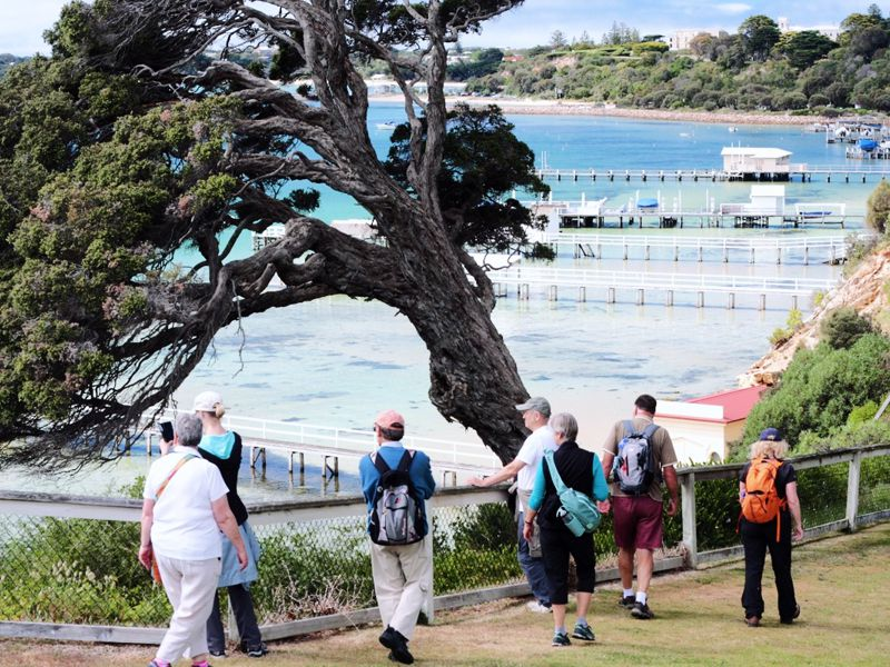 Bayplay Adventure Tours | Mornington Peninsula |